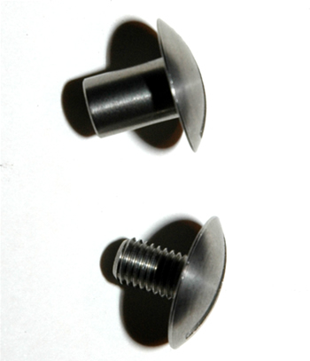 Stainless steel screw to attach a wing, or Armadil